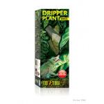 BOX_Dripper_Plant_SMALL_PT2490_RGB
