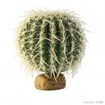 PT2985_Barrel_Cactus_Large