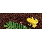 plantation_soil_brick