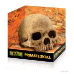 PT2855_Primate_Skull_Packaging