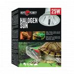 Halogen-Sun-Final